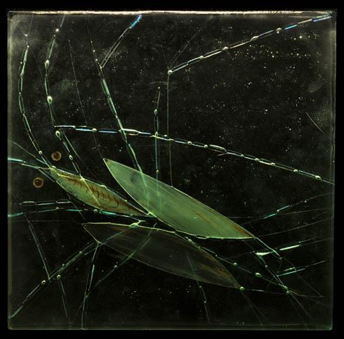 DEEP SEA 1, glass, 25x25cm, 2013